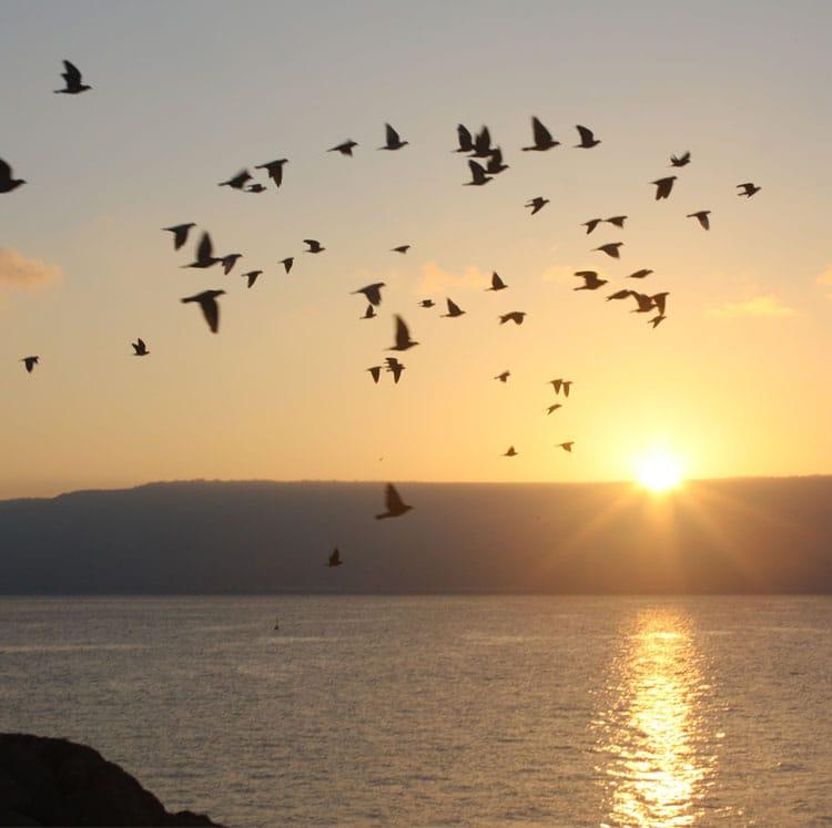 Sea of Galilee Sunrise, Israel